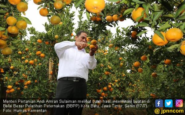 Mentan Amran Teknologi Pertanian Di Batu Sebagai Role Model