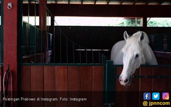 Prabowo Posting Foto Kuda di Instagram, Apa Maksudnya ya?