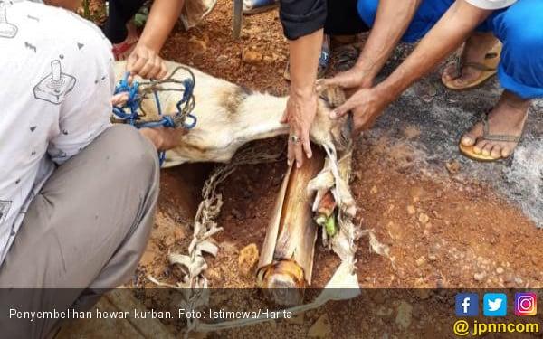Anak Buah Anies Baswedan Bakal Awasi Ketat Perayaan Iduladha - JPNN.com