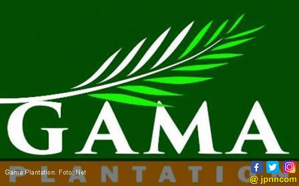 Gama Plantation: Kebakaran Lahan Bukan di Area Perusahaan - JPNN.COM