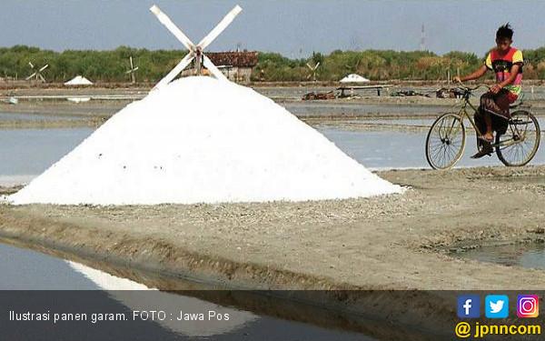 Ketahui Perbedaan antara Garam Beryodium dan Garam Laut - JPNN.COM