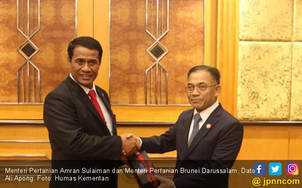 Persahabatan Amran dengan Dato Ali Apong Berbuah Kerja Sama - JPNN.COM