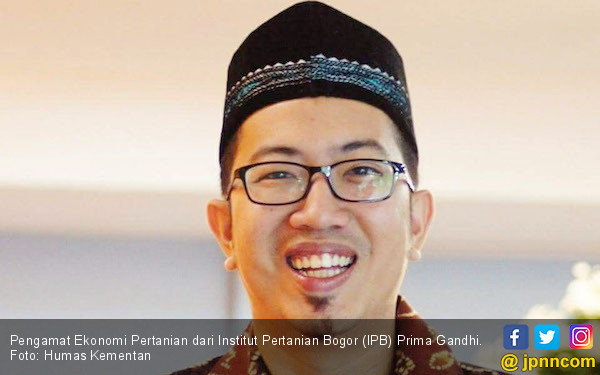 Akademisi IPB Nilai Pengamat Pro Impor Dukung Mafia Beras - JPNN.com