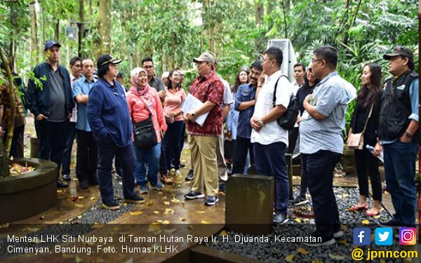 Menteri LHK Tinjau Persiapan Penyerahan SK Perhutanan Sosial - JPNN.COM