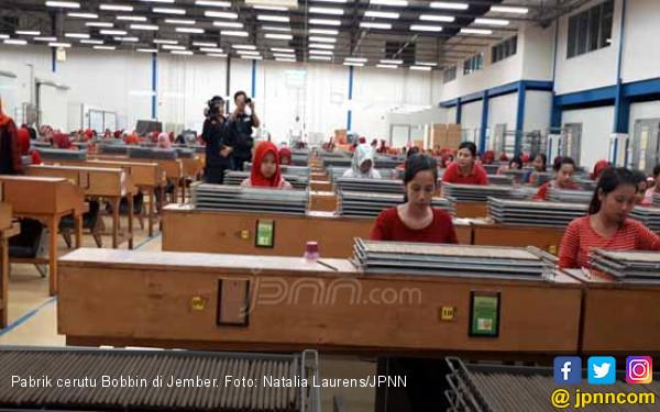 Inilah Pabrik Cerutu Terbaik Jember yang Mendunia - JPNN.COM