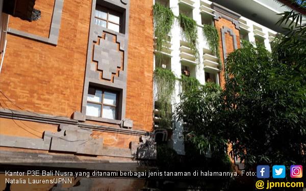 Keren! P3E Bali Nusra, Kantor yang Terapkan Eco Office - JPNN.COM