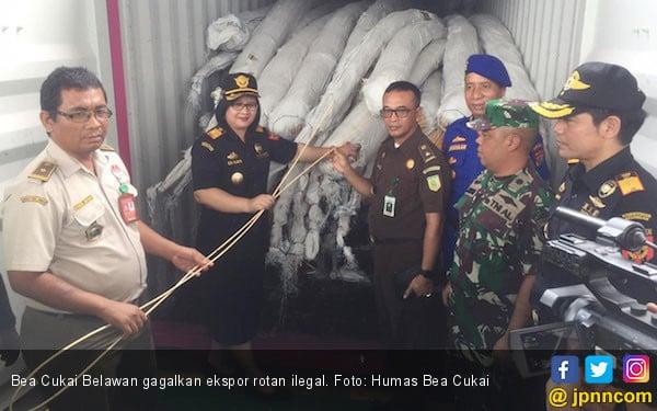 Menutup 2018, Bea Cukai Belawan Gagalkan Ekspor Rotan Ilegal - JPNN.COM