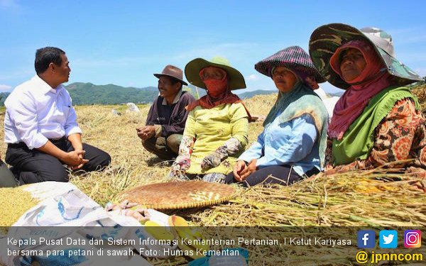 Pdb Sektor Pertanian Terus Membaik Ekonomi Jpnncom
