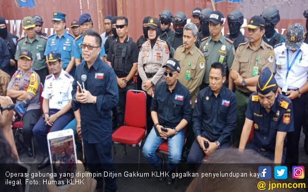 KLHK dan Tim Gabungan Amankan 57 Kontainer Kayu Ilegal - JPNN.COM