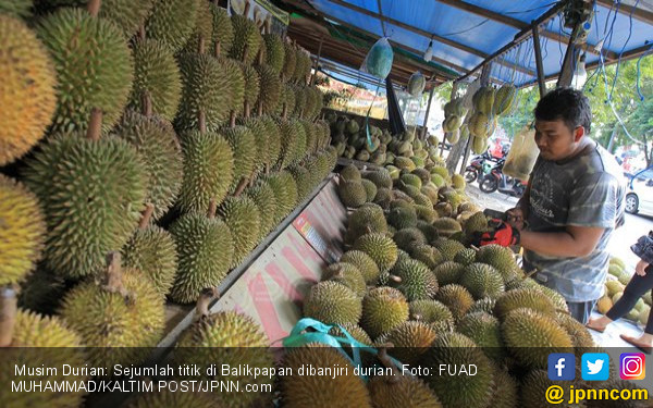 Silakan Nikmati, Percayalah Semua Ini Durian Jatuh, Haahaa.. - JPNN.COM