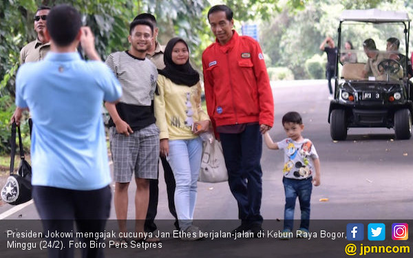 Addie MS Iri Pada Pak Jokowi - JPNN.com