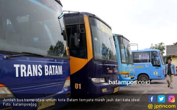 Batam Butuh Tambahan 48 Unit Bus Trans Agar Semua Daerah Terlayani - JPNN.COM