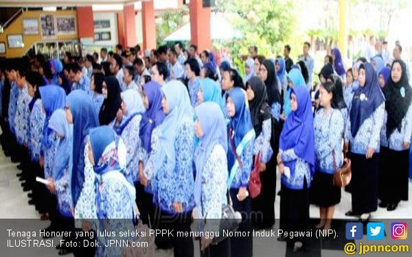 Desember 2020 Belum Terima NIP PPPK, Status Honorer K2 Terancam - JPNN.com