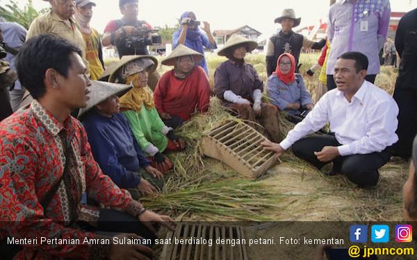 Pemerintah Komitmen Jaga Harga Gabah demi Kesejahteraan Petani