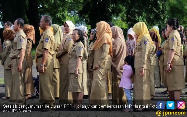 51 Ribu NIP PPPK Sudah Disiapkan, tetapi Sabar ya - JPNN.com