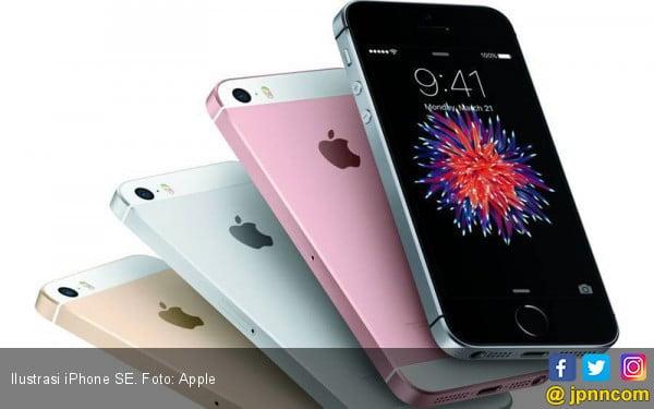 Apple Setop Penjualan iPhone SE, iPhone 6 Series di India, Ini Alasannya! - JPNN.com
