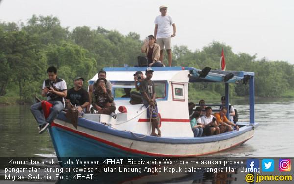 Yayasan KEHATI Dorong Pemprov DKI Lestarikan Hutan Lindung Muara Angke - JPNN.com