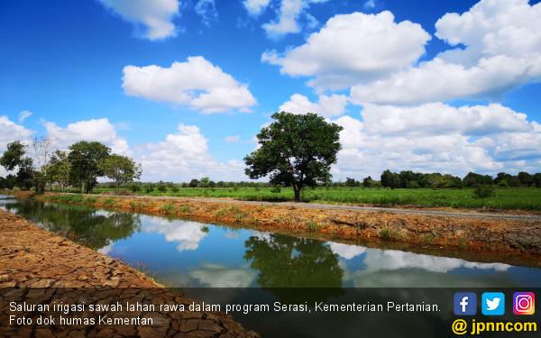 Mentan Kagum Lihat Semangat Ibu-ibu Petani Olah Sawah Rawa - JPNN.com