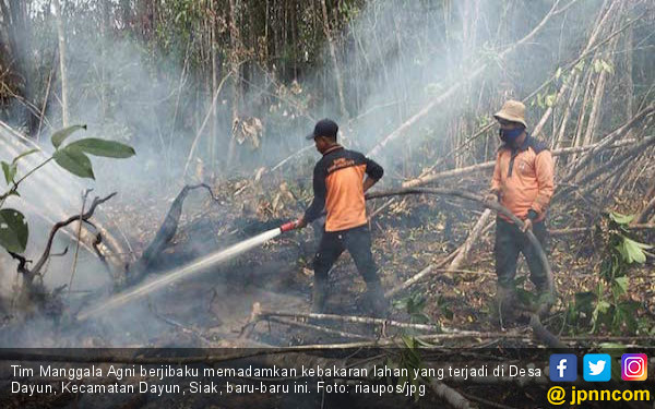 Karhutla di Riau Capai 27.683 Hektare, Terluas Sepanjang 2019 - JPNN.com