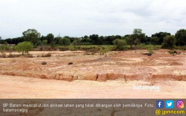 Badan Pengusahaan Cabut Izin Alokasi Lahan Milik PT Pulau Mas Putih - JPNN.com