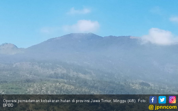 Hutan di Jatim Terbakar, Kabut-Angin Kencang Hambat Operasi Pemadaman Udara - JPNN.com