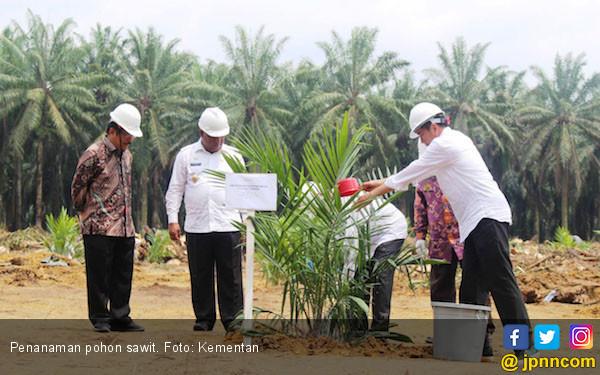 Tahun Ini, PDB Pertanian Tumbuh Luar Biasa - JPNN.com
