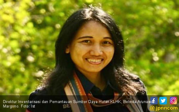 KLHK Bantah Tudingan Greenpeace Terkait Deforestasi Indonesia Buruk - JPNN.com