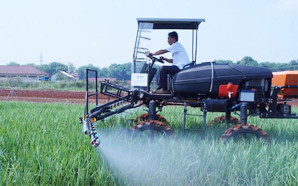 Kementan: NTP Agustus Naik Karena Peningkatan Produktifitas Pertanian - JPNN.com