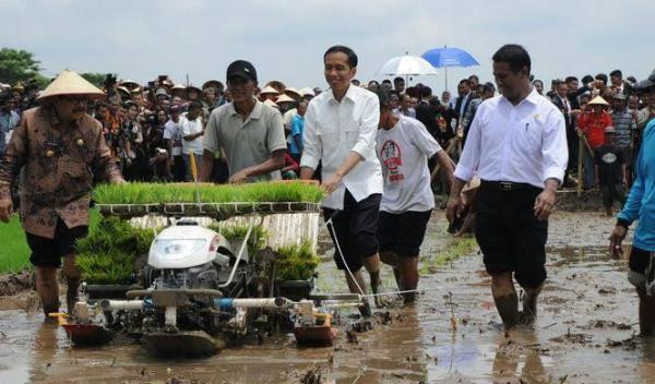 Nilai Tukar Petani Agustus Naik, Dampak Peningkatan Produktifitas Pertanian - JPNN.com