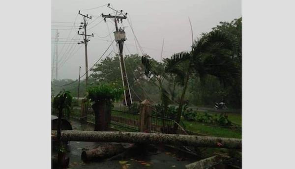 Angin Puting Beliung Mengamuk, Pohon Tumbang Timpa Mobil, Dua Warga Terluka - JPNN.com