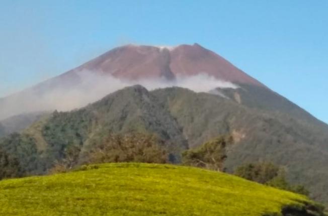Kebakaran Hutan Berkobar di Lereng Barat Gunung Slamet - JPNN.com