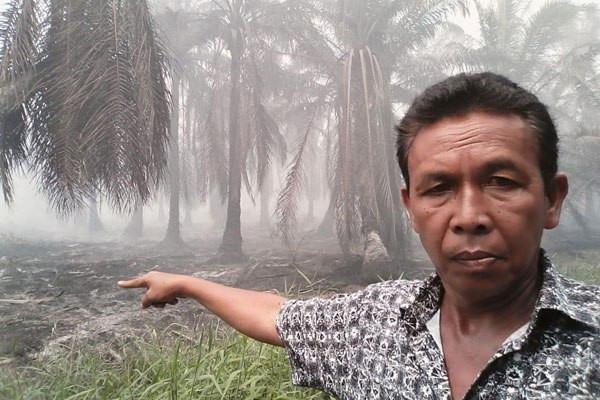 Puluhan Hektare Kebun Sawit di Labuhanbatu Terbakar - JPNN.com