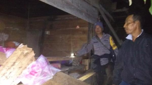 Kawanan Gajah Masuk Perkebunan dan Permukiman Warga, Rumah Rusak Begini! - JPNN.com