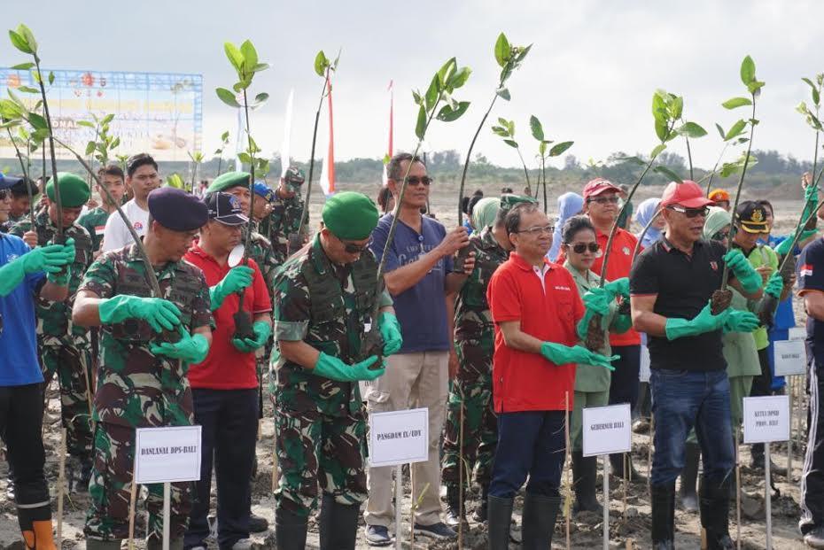 Hijaukan Pesisir,Pelindo III dan TNI Tanam Ratusan Ribu Bibit Bakau - JPNN.com