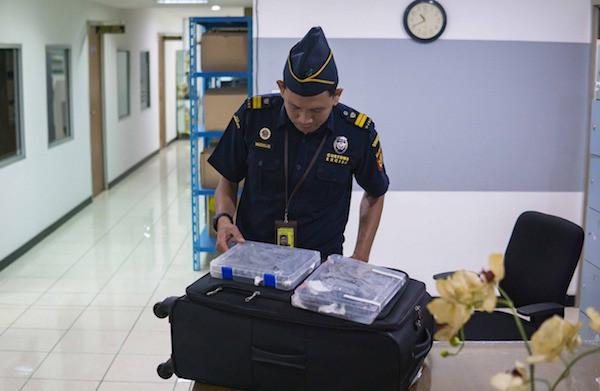 Bea Cukai Soekarno Hatta Gagalkan Penyelundupan 16 Ekor Kadal - JPNN.com