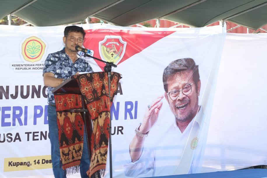 Kementan Bersama Pemda NTT Komitmen Perkuat Gratieks Komoditas Peternakan - JPNN.com