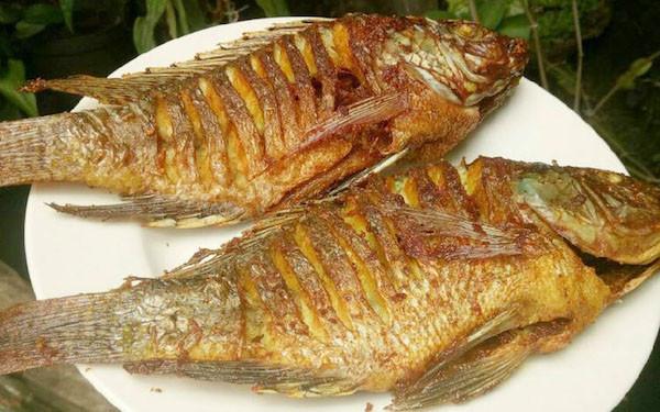 Ini Manfaat Kesehatan Makan Ikan Nila