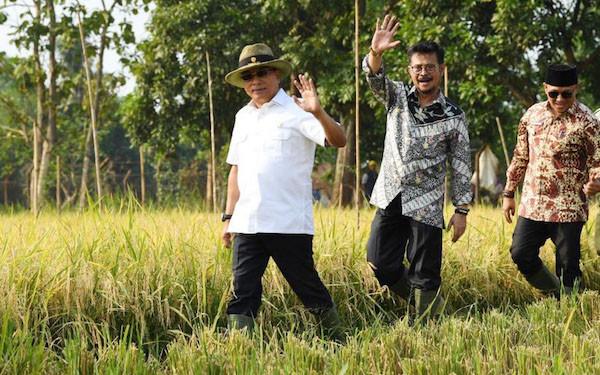 Pengamat: SYL Selamatkan Masa Depan Pertanian - JPNN.com