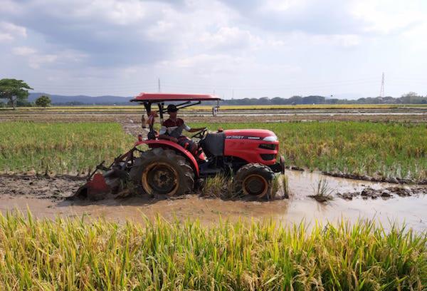 Tiongkok Tertarik Kembangkan Pertanian di Sukabumi - JPNN.com
