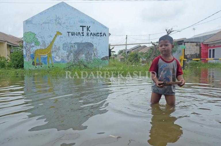Rumah Subsidi yang Diresmikan Jokowi Kebanjiran, Kali Ini Terparah - JPNN.com
