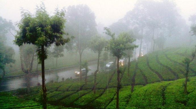 Angin Kencang Melanda Puncak Bogor, Begini Penjelasan BMKG - JPNN.com