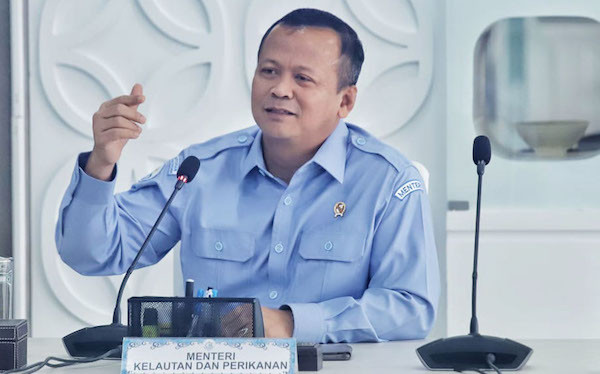 Halo, Bu Susi, Pak Edhy Bilang Lobster Bertelur 1 Juta Butir per Bulan - JPNN.com