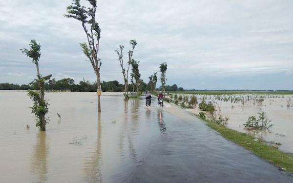 600 Ha Sawah Banjir, Petani Bisa Klaim Asuransi - JPNN.com