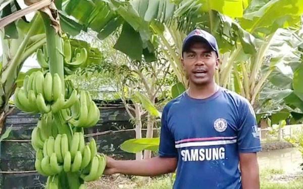 Petani Milenial asal Kupang Ini Mampu Tembus Pasar Modern - JPNN.com