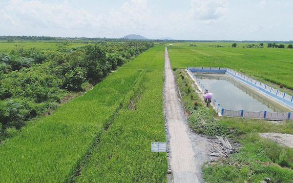 Pertanian Indonesia Akan Bersaing dengan Negara Luar Jika RUU Cipta Kerja Disahkan - JPNN.com