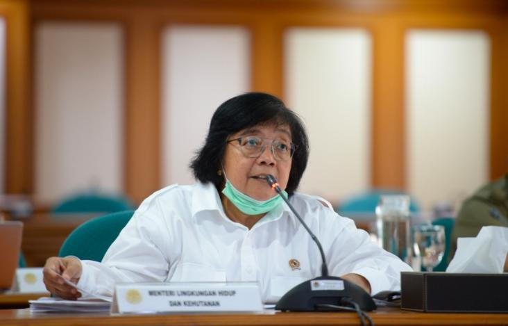 Menteri Siti: Analisis KarhutlaHarus Akurat dan Adil, JanganMelakukan Framing - JPNN.com