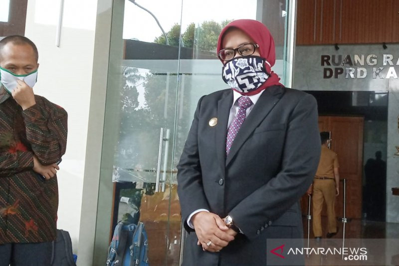 Ade Yasin: Saya Meminta Maaf - JPNN.com