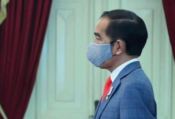 Gubernur Kepri Positif Covid-19, Bagaimana Nasib Presiden Jokowi? - JPNN.com