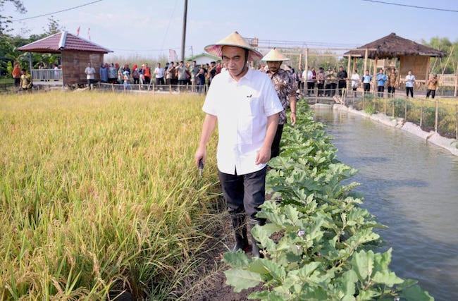 Ikut Panen Padi, Wamen Budi Arie Tegaskan Desa Tetap Produktif di Masa Pandemi - JPNN.com