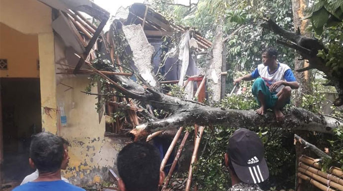 Rumah Warga Bogor Hancur Tertimpa Pohon Tumbang - JPNN.com